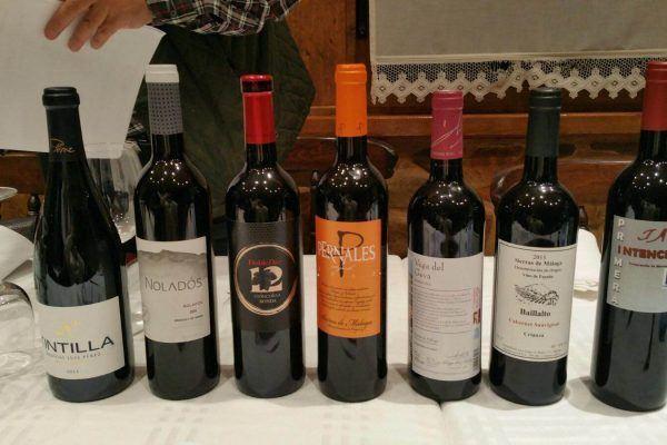 Cata Octubre vinos Sierra de Málaga y Sierra de Cádiz