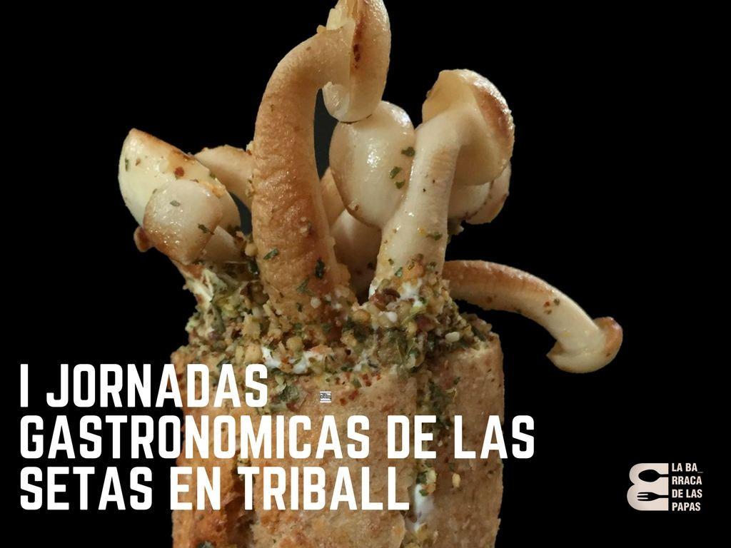 I Jornadas gastrononicas de las setas en triball