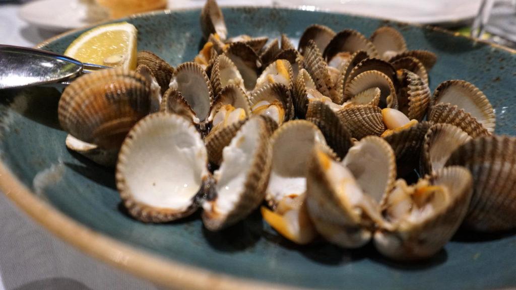 Berberechos, mes de la concha circulo marisqueria